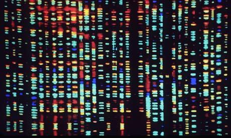 Genetic Basis of Disease Resistance and Heat Tolerance analysed inGir